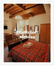 aperçu d'image studio loft Mimosa de l'Antica Corte Milanese