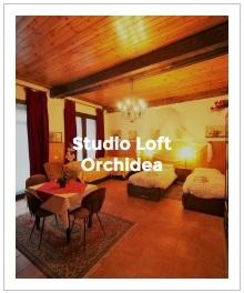 aperçu d'image studio loft Orchidea de l'Antica Corte Milanese