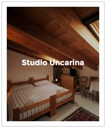 aperçu du studio Uncarina