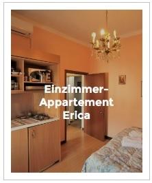 Bild Einzimmer-Appartement Erica im Antica Corte Milanese