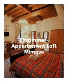 Bild Einzimmer-Appartement Loft Mimosa im Antica Corte Milanese