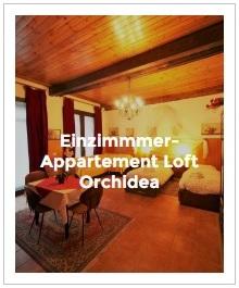 Bild Einzimmer-Appartement Loft Orchidea im Antica Corte Milanese