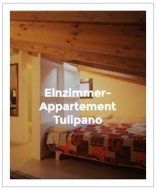 Bild Einzimmer-Appartement Tulipano im Antica Corte Milanese