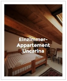 Bild Einzimmer-Appartement Uncarina im Antica Corte Milanese