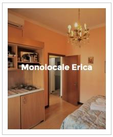 immagine d' anteprima monolocale Erica dell' Antica Corte Milanese