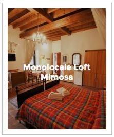 immagine d' anteprima monolocale loft Mimosa dell' Antica Corte Milanese