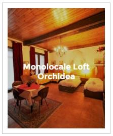 immagine d' anteprima monolocale loft Orchidea dell' Antica Corte Milanese