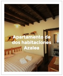 previsualización apartamento de dos habitaciones Azalea