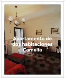 previsualización apartamento de dos habitaciones Camelia