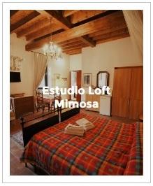 previsualización del estudio loft Mimosa