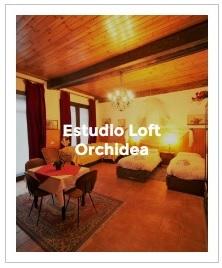 previsualización del estudio loft Orchidea
