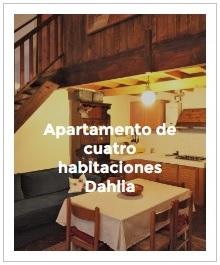 previsualización apartamento cuatro habitaciones Dahlia