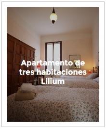previsualización apartamento tres habitaciones Lilium