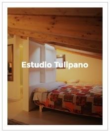 previsualización del estudio Tulipano