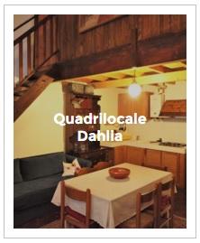 immagine d' anteprima del quadrilocale Dahlia dell' Antica Corte Milanese