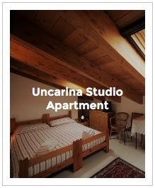 Preview Image of Uncarina studio in Antica Corte Milanese