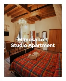 Preview Image of Mimosa loft studio in Antica Corte Milanese