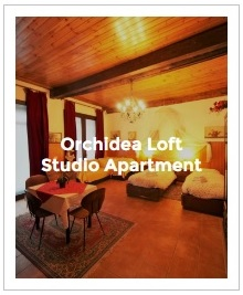 Preview Image of Orchidea loft studio in Antica Corte Milanese
