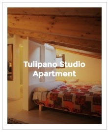 Preview Image of Tulipano studio in Antica Corte Milanese