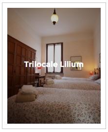 immagine d' anteprima del trilocale Lilium dell' Antica Corte Milanese