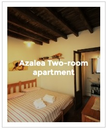 Preview Image of Azalea two-room apartment in Antica Corte Milanese